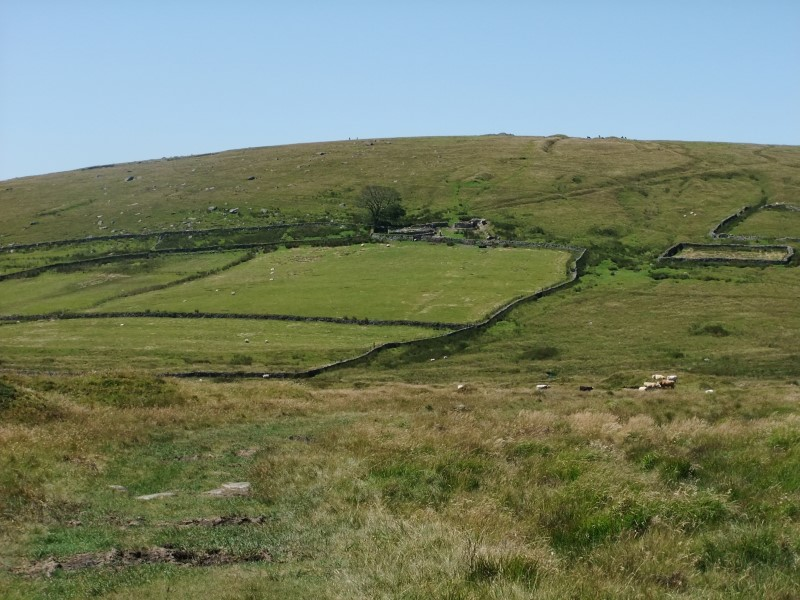 Walk Across Dartmoor on July 1 & 2
